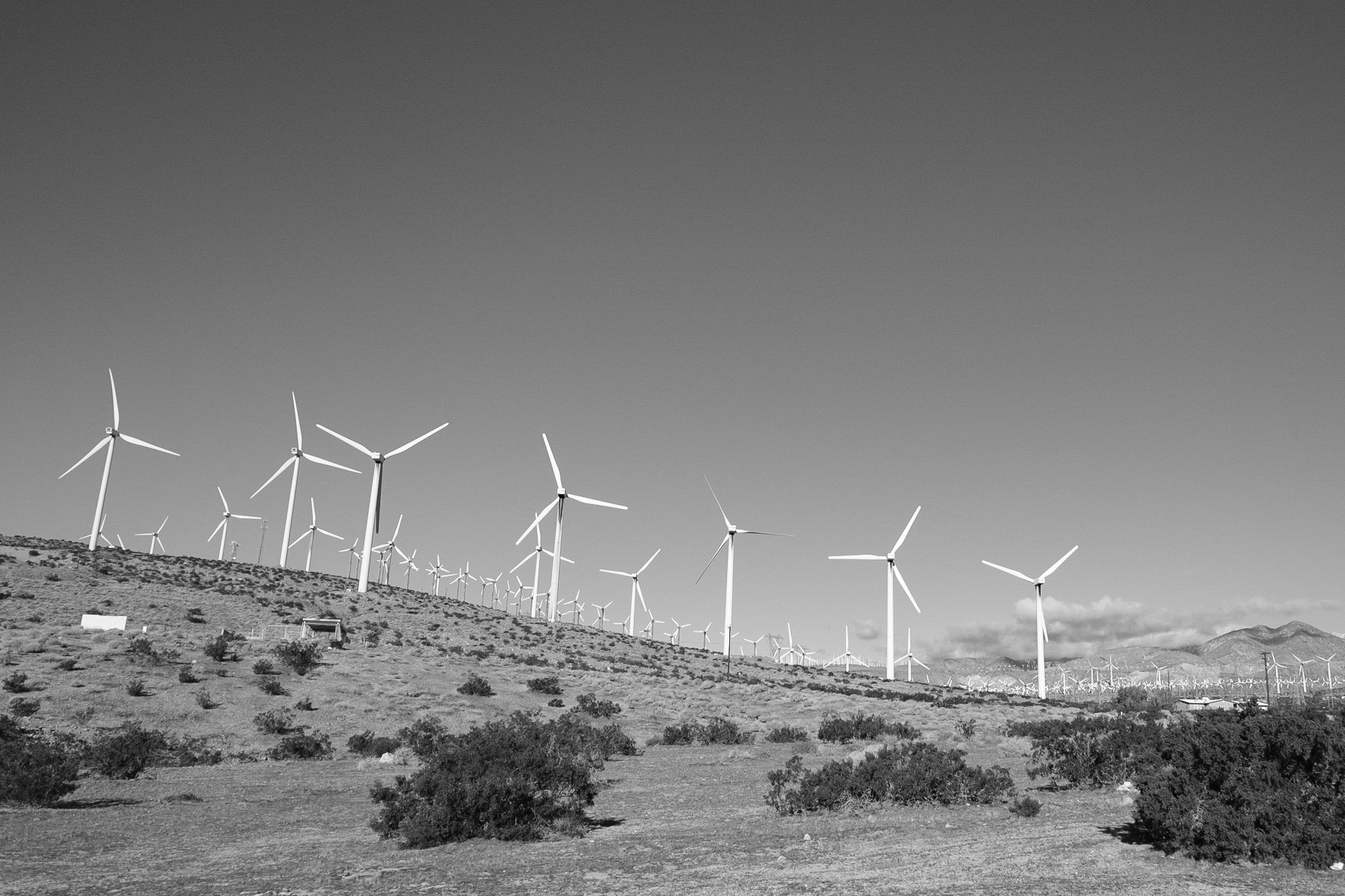 windmill-farm-palm-springs-ca-black-and-white-photography-zach-barocas